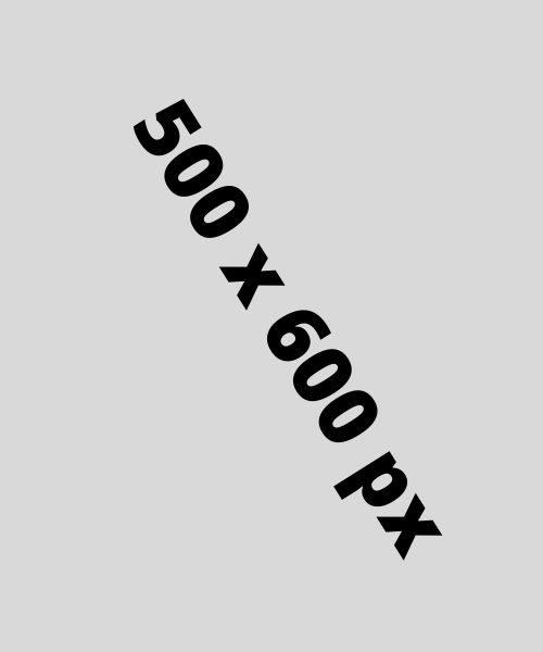 500 x 600 px